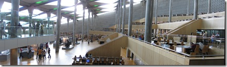 STB_5578 Stitch AlexLibrary
